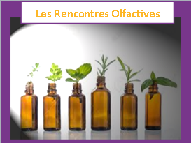 programme rencontres olfactives